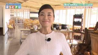 横須賀市テレビ広報番組「YOKOSUKAほっとナビ」は、イベント開催のご案...