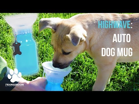 Highwave: Auto Dog Mug   TRANSGROOM