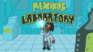 Mexikos Laboratory Samples