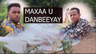 MAXAA U DANBEYAY, , , , , , , , , !