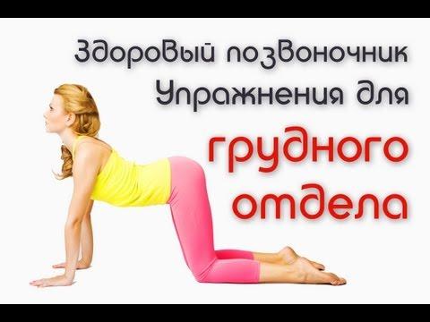 Лечебная гимнастика для позвоночника. Гимнастика для спины