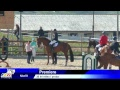 Turda - Duminica - Salina Equines Spring Competition live by Luxury-Photo-Video