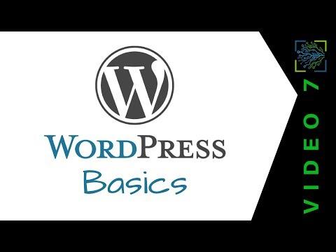 WordPress Basics: A Crash Course To Comfortably Create Content   V7