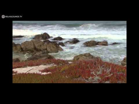 Relax with OCEAN DREAMS - 02 PACIFIC DREAMS (PURERELAX.TV)