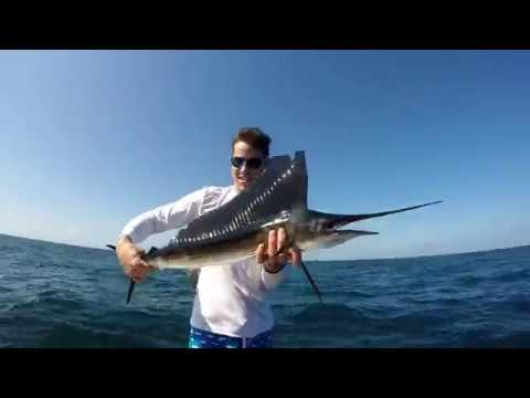 Snapper and Snook Inshore then mini Sailfish Offshore