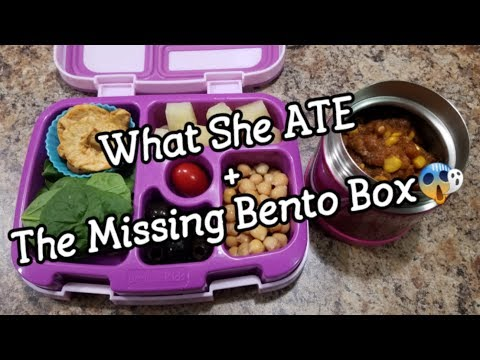 Easy Bento Lunches + What She Ate - Chicken Salad Recipe - Bento School Lunch Ideas - 31st week