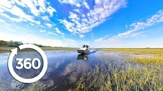 Let's Go Places: Florida | Swamp Things (360 Video) thumbnail