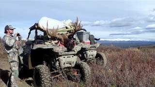 "53"" Alaska Bull Moose Hunt 2017"