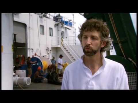 CO2 Ocean Recycling Using Wave-Driven Ocean Pumps