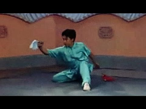 Wushu chain whip basic moves