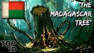 Top 10 Scary Madagascar Urban Legends
