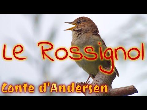 Livre audio : Le Rossignol, conte d'Andersen