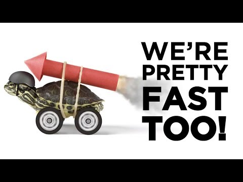 we're-pretty-fast-too!-|-amcap-home-loans