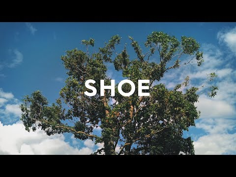 Allbirds Tree Runners: Comfy Shoes Made From Trees