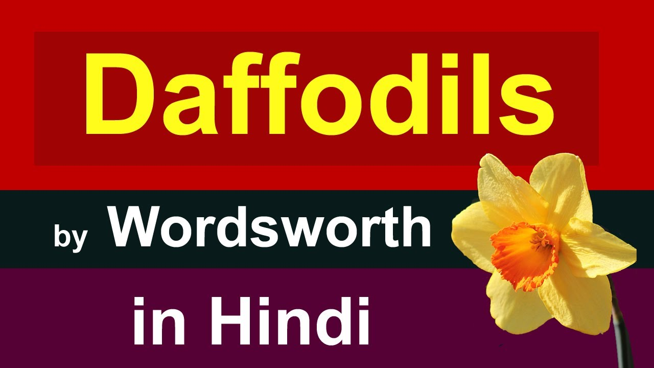 Daffodils By William Wordsworth In Hindi I Wandered Lonely As A Cloud In Hindi Youtube