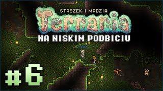 Terraria PL #6 z Madzią | Dżungla! Gryzą, plują i dźgają D: