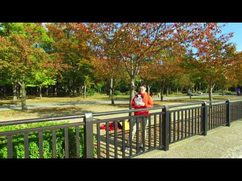 JAPAN OSAKA 4K DRONE VIDEO