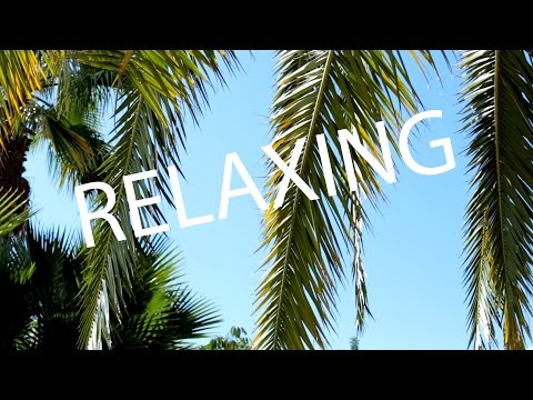 4 hours relaxing soft wind sound WITHOUT music, palm, beach, studying, learning