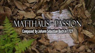 Bach Matthäus-Passion 마태수난곡 지휘 김성기 St. Matthew passion BWV 244 - Part 1