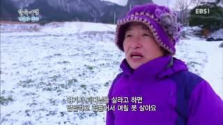 한국기행 - Korea travel_겨울과 산다 3부- 울릉도 맛나다_#002