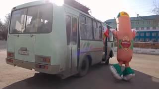 ღ РЖАЛ ДО СЛЕЗ сосиска не успела на автобус ღ