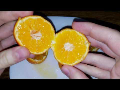 Clementina Comune / Clementine Comune