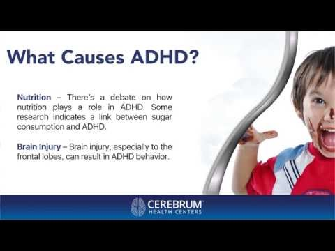 What Happens In An ADHD Brain