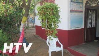 Casa Camping Mr. Wilson Guestt House Inmobiliaria Turistica en Taganga