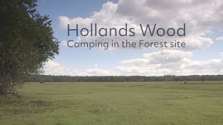 Hollands Wood Camping in the Forest site