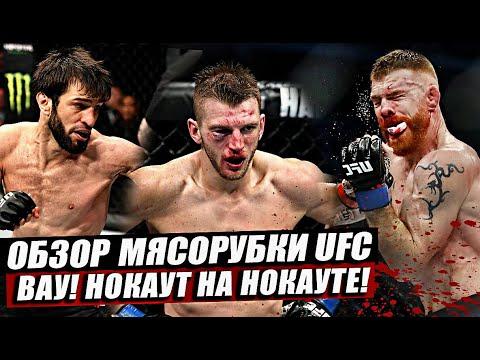 Обзор Адской Рубки UFC! Пол Фелдер Vs Дэн Хукер. Зубайра Тухугов вырубает! Магомед Мустафаев.