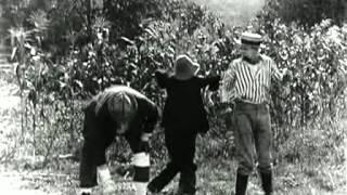 LO SPAVENTAPASSERI (The Scarecrow, 1920)