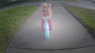 Video Bebek Motinha Yürüyen Bebeğim Hayatta!!! 4 [Bölüm] Tototoykids download MP3, 3GP, MP4, WEBM, AVI, FLV November 2017