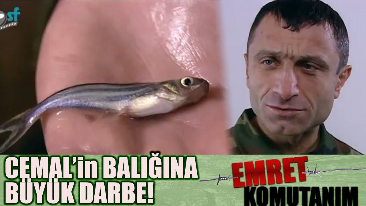 Laz Cemal'in Hamsisine BÜYÜK DARBE! - Emret Komutanım