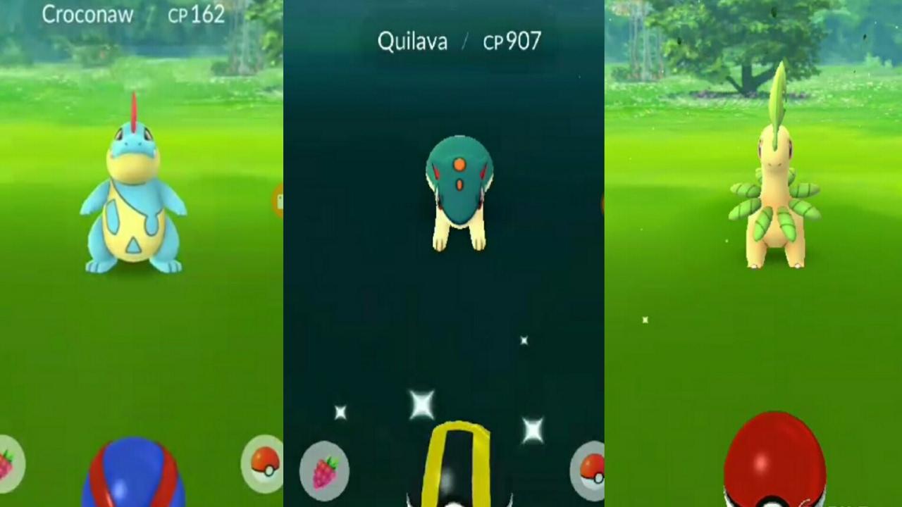 Pokemon Go Gen 2 Second Evolution Catches Quilavacrconawbayleef