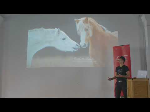 Mozilla Developer Roadshow Asia: Hui Jing Chen on CSS Grid