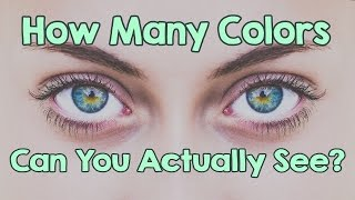 Color Blind Test - How Many Colors Can You Actually See?
