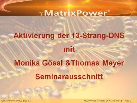 MatrixPower® 13-Strang-DNS- & Torus-Aktvierung Seminarausschnitt