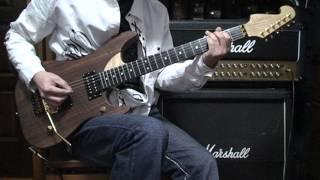 以前によく弾いた曲を復習を兼ねて撮ってみました。(使用モデル)Washb...