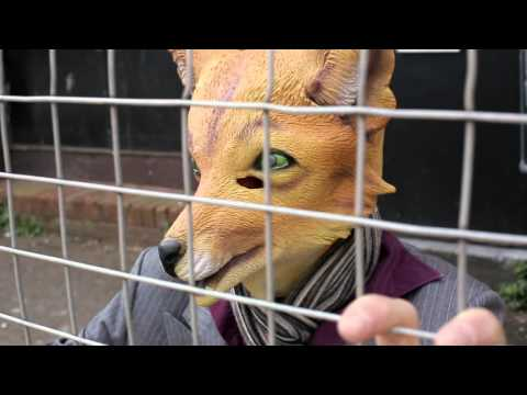 Fantastic Mr Fox - The Barefoot Bandit (OFFICIAL VIDEO)