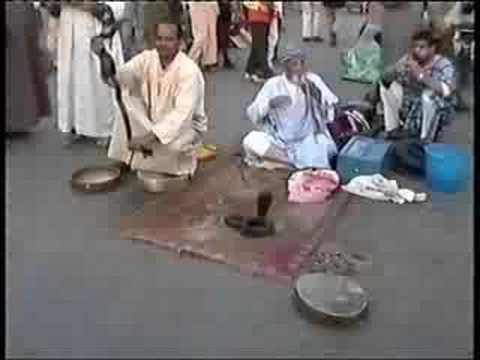 Maroc vid o d couverte de la ville de marrakech youtube for Piscine demontable maroc