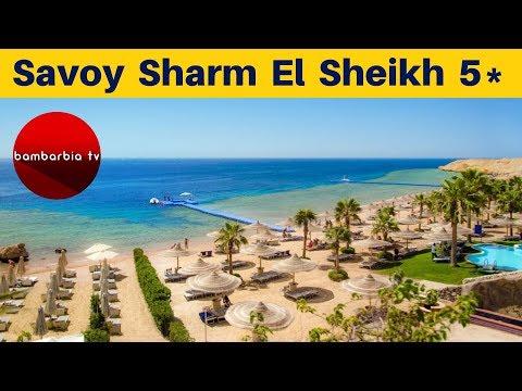Честные обзоры отелей Египта: Savoy Sharm 5* (Шарм-эль-Шейх)