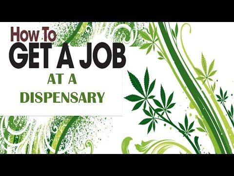 How To Get A Job At A Dispensary - UNTOLD SECRETS!