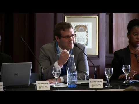 PANEL II: African courts and international crime divisions