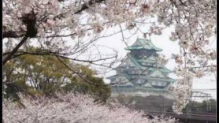 真木柚布子 - 大阪マンボ