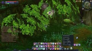 Обложка на видео о Баг крыльев(бесконечный полет) - AION PANDA (ЗБТ)