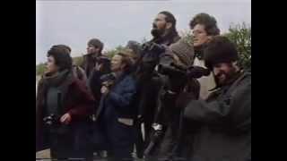 Do Not Disturb BBC 1991 Peter Capaldi Frances Barber