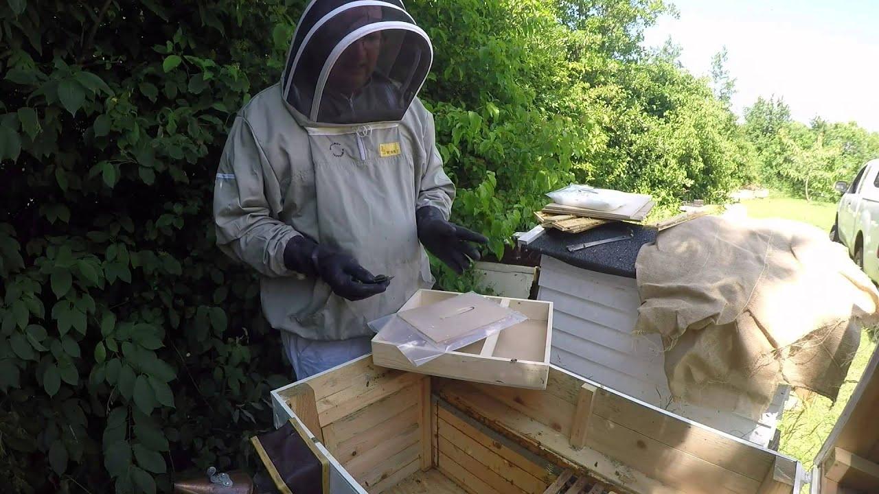 bihuset tappernøje