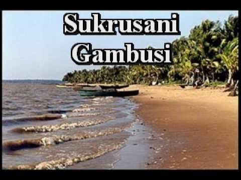 Sukru Sani - Gambusi