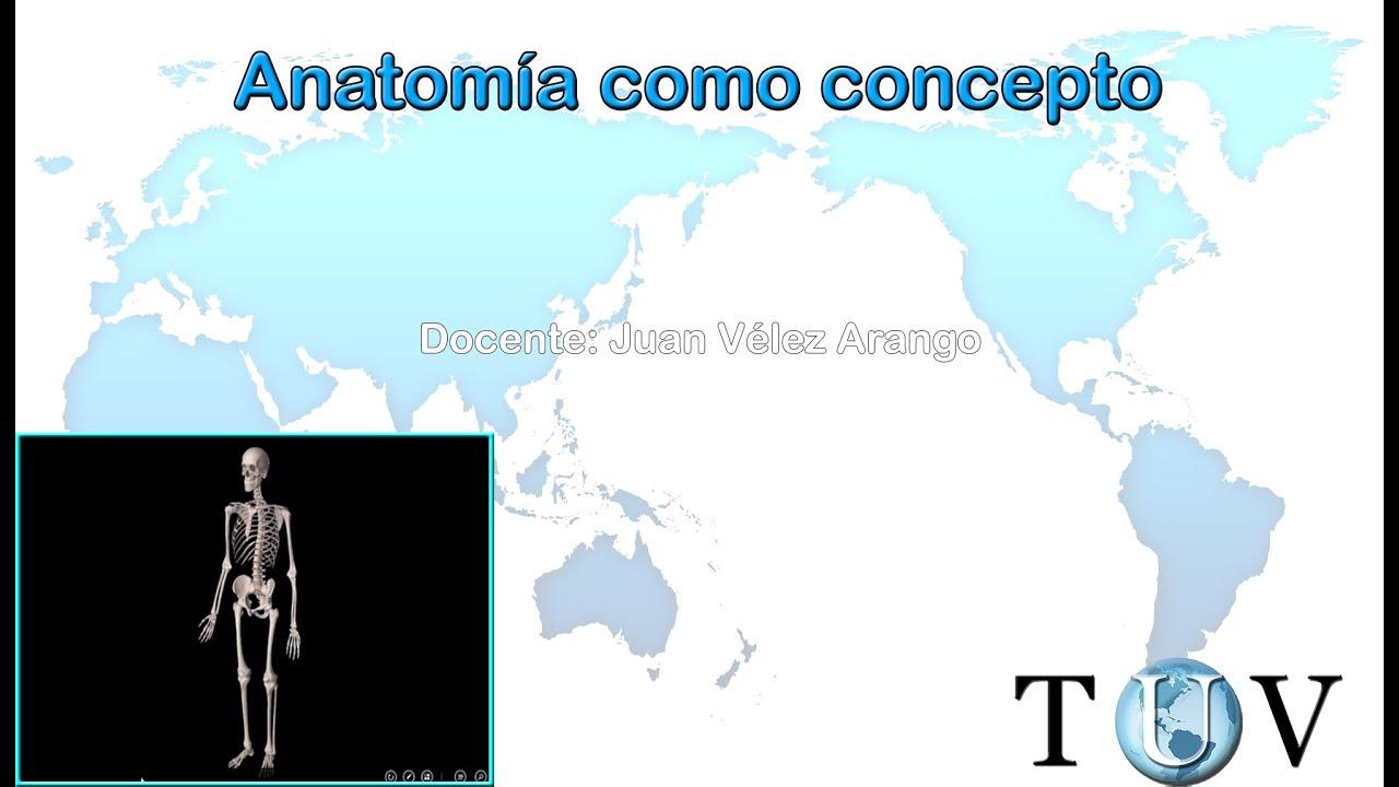 La anatomía como concepto - Generalidades de anatomía - YouTube