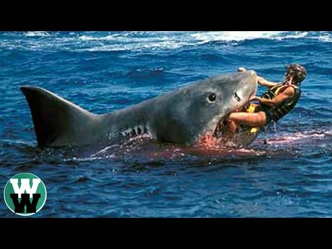 10 DEADLIEST Shark Attack Stories